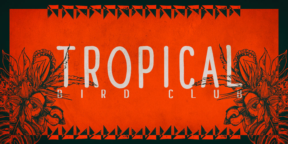 ekgdesign-tropical dub club